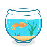 Vector foshbowl with golden fish. And water plants isolated on white background Stock Photography
