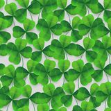 Vector four-leaf clover seamless pattern background. Lucky fower-leafed green background for festival St Patrick`s. Vector four-leaf clover seamless pattern Stock Images