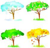 Vector four season trees Royalty Free Stock Image