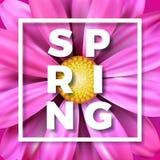Vector Frühlingsillustration mit schöner bunter Blume auf rosa Hintergrund Blumenmusterschablone mit Typografie Lizenzfreies Stockbild