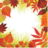 Vector frame with from autumn leafs. Thanksgiving Stock Photos