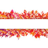 Vector frame with autumn leaves in grunge style Stock Images