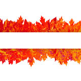 Vector frame with autumn leaves in grunge style Stock Photos