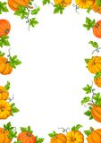 Frame background with orange pumpkins and green leaves. Vector illustration. Royalty Free Stock Photos