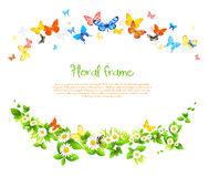 Vector frame with beautiful butterflies and daisy Stock Photos