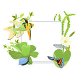 Vector frame border with colorful fishes and algae. Vector border circle frame with colorful fishes Royalty Free Stock Photo