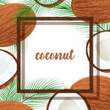 Vector frame with coconuts and tropical leaves. Royalty Free Stock Photo