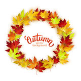 Vector frame with colorful autumn leaves, card template, natural backdrop Stock Photo