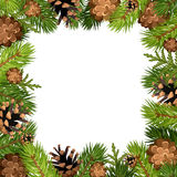 Vector frame with fir tree branches and cones. Stock Photo