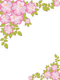 Vector Frame with floral pattern. Rectangular frame with a pattern of pink-purple flowers in the corners Stock Images