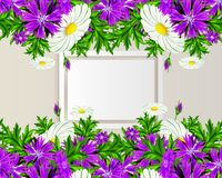 Vector frame with flowers Stock Photos
