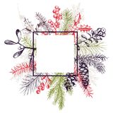 Vector frame with hand drawn Christmas plants Royalty Free Stock Photo
