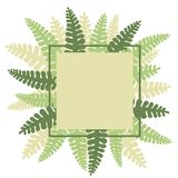 Vector frame with  hand drawn fern. Royalty Free Stock Photography