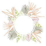 Vector frame with Hand drawn tropical plants. Stock Image