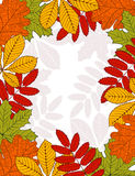 Vector Frame of leaves Royalty Free Stock Image