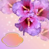 Vector frame with lovely flowers Royalty Free Stock Images
