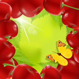 Vector frame made of cherry. With a butterfly on a green background Royalty Free Stock Photos