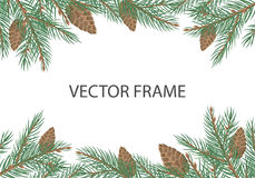 Vector Frame with Pine Tree Brunches and Cones. Vector frame with pine tree brunches, cones and copyspace. Flat style. Evergreen tree decoration. Celebrating Stock Image