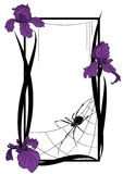 Vector frame with spider and irises Royalty Free Stock Photography
