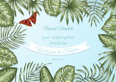 Vector frame template with tropical leaves and atlas moth on blue background royalty free illustration