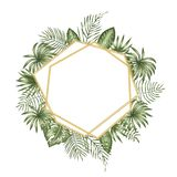 Vector frame template with tropical leaves and golden chain with white place for text royalty free illustration