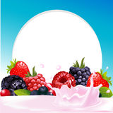 Vector frame with wild berry fruit and milk splash Stock Images