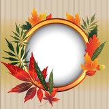 Vector frame withl Autumn Leafs. Stock Image