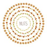 Vector frames with nuts vector illustration