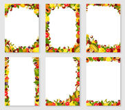 Vector frames set of exotic fresh fruits Stock Images