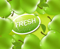 Vector fresh apple background Stock Image