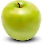 Vector fresh green apple Royalty Free Stock Image