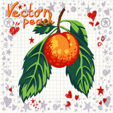 Vector fresh peach with leaves Royalty Free Stock Photos