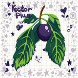 Vector fresh plum with leaves Royalty Free Stock Photo