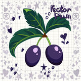 Vector fresh plums with leaves Stock Photo