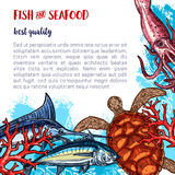 Vector fresh seafood and fish food poster. Fresh seafood poster for fish or sea food market or restaurant. Vector design of fishery turtle, squid or shrimp and Royalty Free Stock Photography