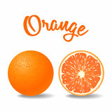 Vector fresh solid and ripe orange Stock Photo