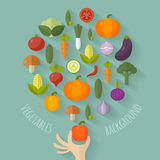 Vector fresh vegetables illustration with flat icons. Stock Photography