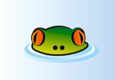 Vector frog in water Stock Photos