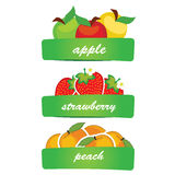 Vector fruit Royalty Free Stock Photos