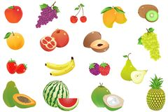 Vector Fruit Stock Image