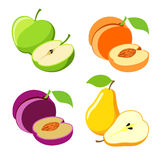 Vector fruit Stock Photography