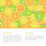 Vector fruit banner. With oranges, limes and lemons Stock Image