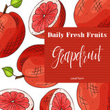 Vector fruit element of grapefruit. Hand drawn icon with lettering. Food illustration for cafe, market, menu design Royalty Free Stock Photos