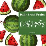 Vector fruit element of watermelon. Hand drawn icon with lettering. Food illustration for cafe, market, menu design Stock Photo