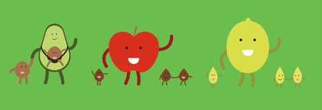 Vector fruit families happy together Royalty Free Stock Photography