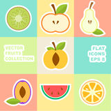 Vector fruit icon Stock Photography