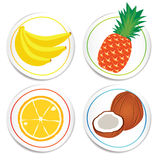 Vector fruit Label Stock Photography