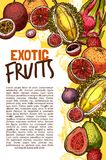 Vector Fruit Shop Sketch Poster Of Exotic Fruits Stock Photography