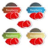 vector fruit stickers - raspberry Stock Image