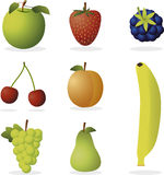 Vector fruits. Set of various vector fruits Stock Photo
